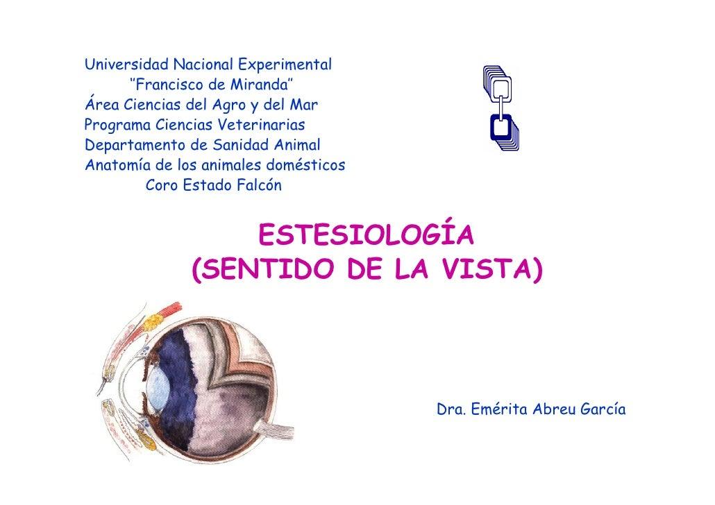 Estesiología ojo pdf