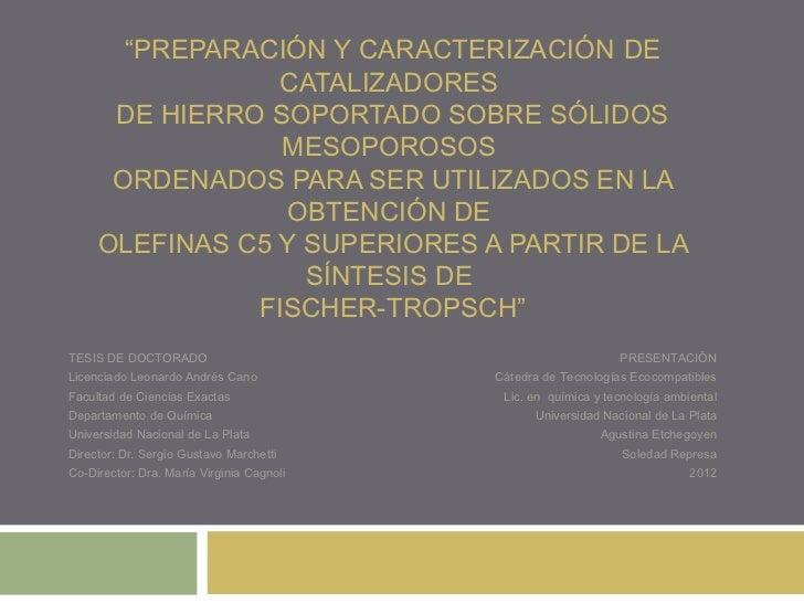 """""""PREPARACIÓN Y CARACTERIZACIÓN DE                 CATALIZADORES      DE HIERRO SOPORTADO SOBRE SÓLIDOS                 MES..."""