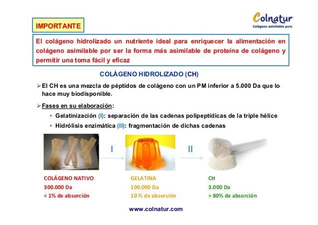 Esther bases - Alimentos que contienen colageno hidrolizado ...