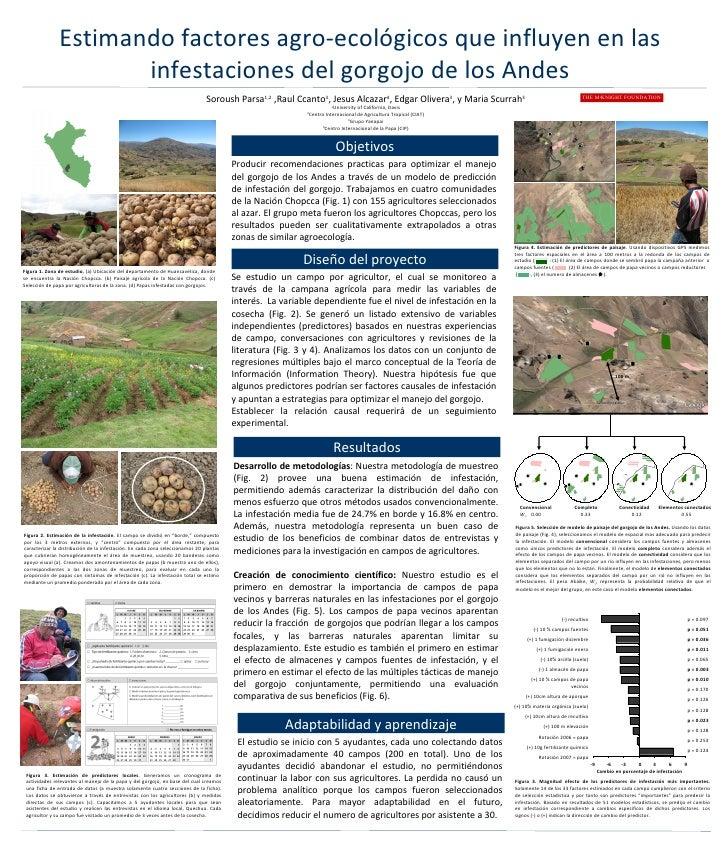 Estimando factores agro-ecológicos que influyen en las infestaciones del gorgojo de los Andes Soroush Parsa 1,2  ,Raul Cca...