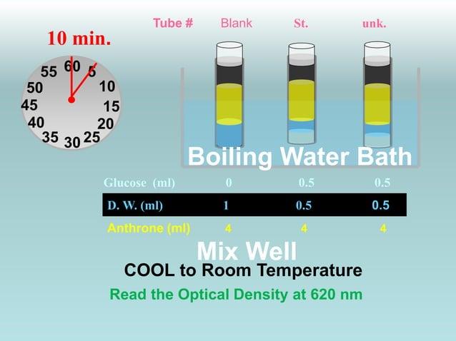 Tube # Blank St. unk.  55  50  45 15  Boiling Water Bath  Glucose (ml) 0 0.5 0.5  D. W. (ml) 1 0.5 0.5  Anthrone (ml) 4 4 ...
