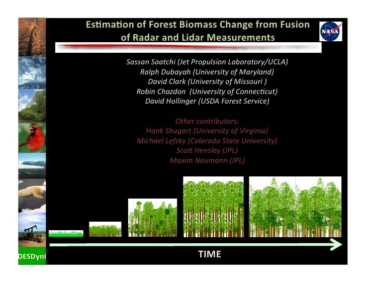 Es+ma+on  of  Forest  Biomass  Change  from  Fusion                       of  Radar  and  Lidar  Mea...