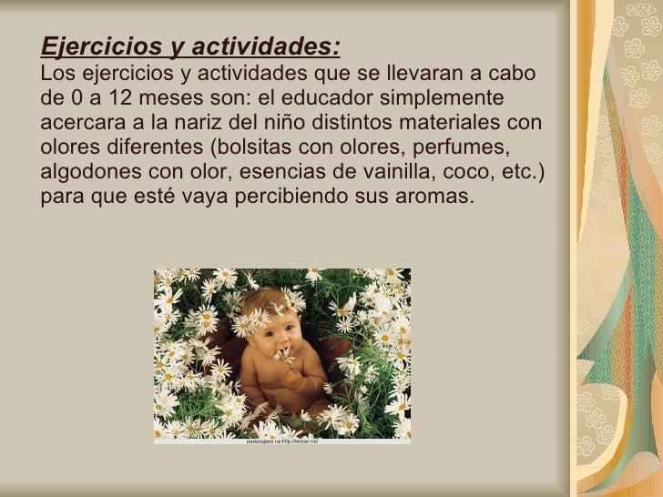 Ejercicios y actividades: Los ejercicios y actividades que se llevaran a cabo de 0 a 12 meses son: el educador simplemente...
