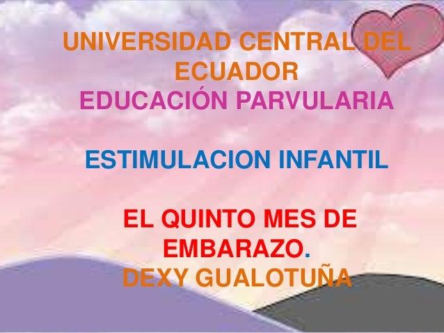 UNIVERSIDAD CENTRAL DEL ECUADOR EDUCACIÓN PARVULARIA ESTIMULACION INFANTIL EL QUINTO MES DE EMBARAZO. DEXY GUALOTUÑA