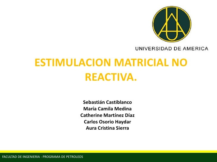 ESTIMULACION MATRICIAL NO                          REACTIVA.                                             Sebastián Castibl...