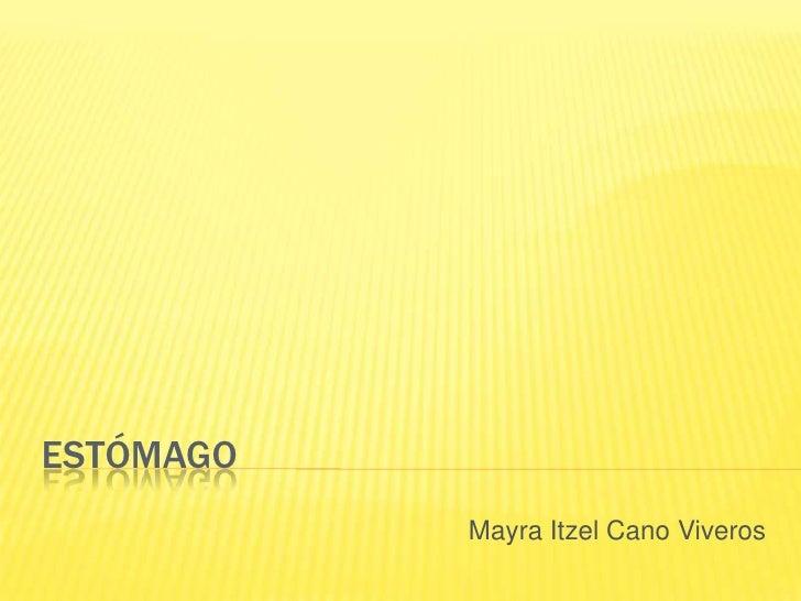 Estómago<br />Mayra Itzel Cano Viveros<br />