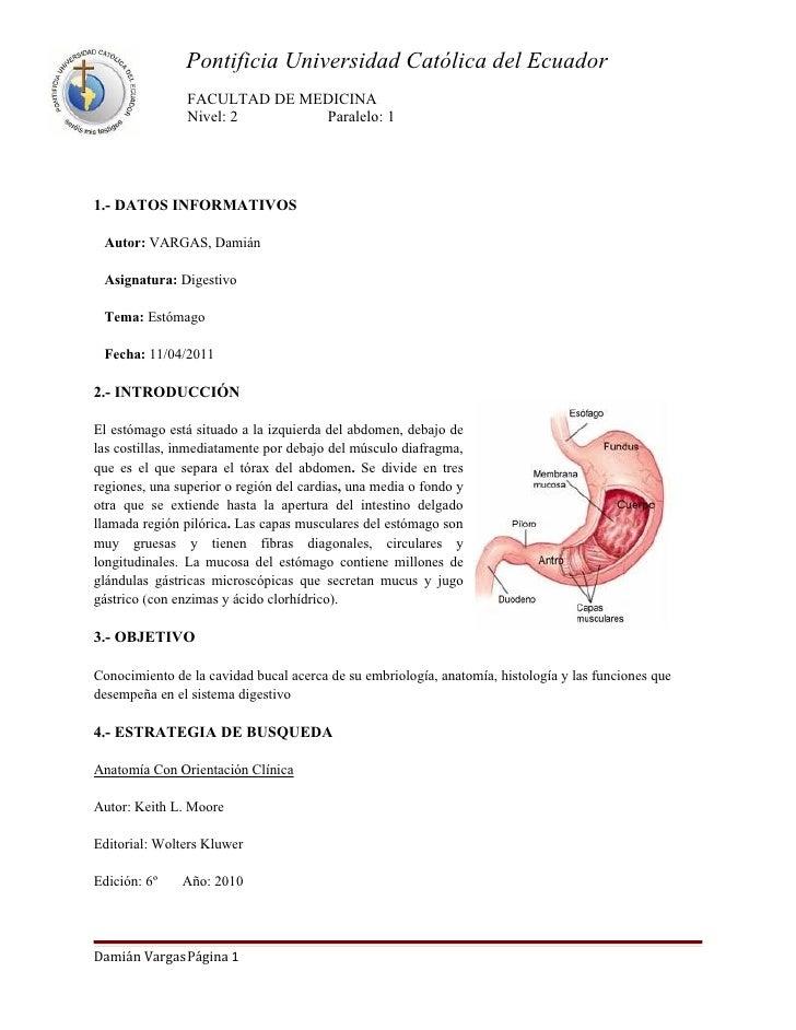 Pontificia Universidad Católica del Ecuador                FACULTAD DE MEDICINA                Nivel: 2      Paralelo: 11....