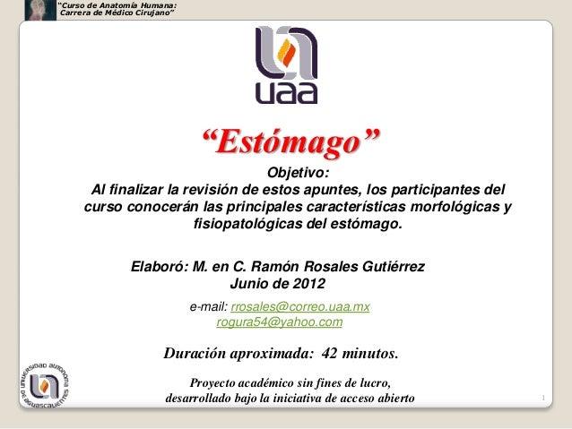 """""""Curso de Anatomía Humana: Carrera de Médico Cirujano""""                                """"Estómago""""                          ..."""