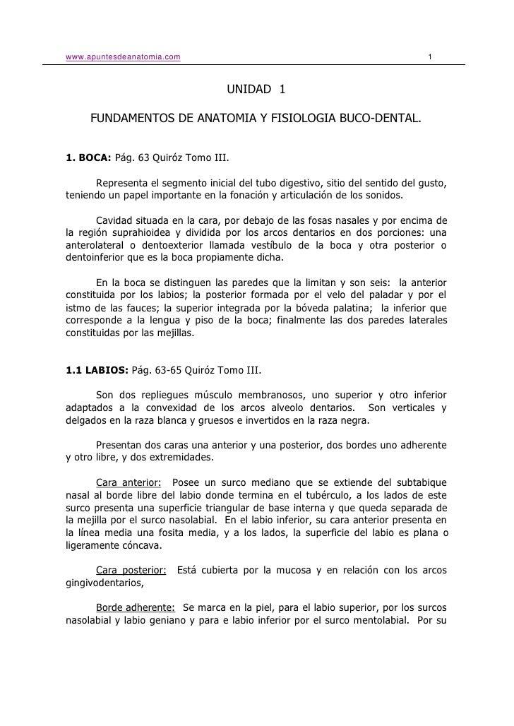 www.apuntesdeanatomia.com                                                        1                                        ...