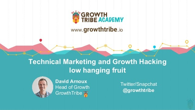 Technical Marketing and Growth Hacking low hanging fruit David Arnoux Head of Growth GrowthTribe www.growthtribe.io Twitte...