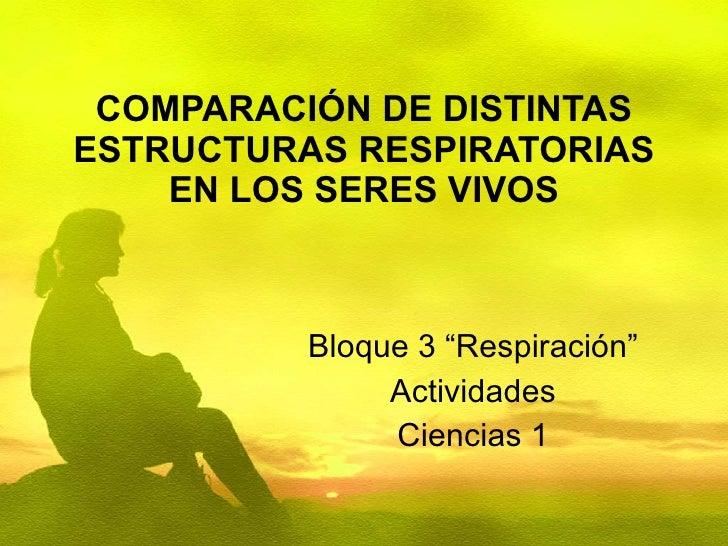 "COMPARACIÓN DE DISTINTAS ESTRUCTURAS RESPIRATORIAS EN LOS SERES VIVOS Bloque 3 ""Respiración"" Actividades Ciencias 1"