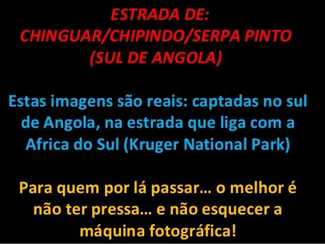 ESTRADA DE: CHINGUAR/CHIPINDO/SERPA PINTO (SUL DE ANGOLA) Estas imagens são reais: captadas no sul de Angola, na estrada ...
