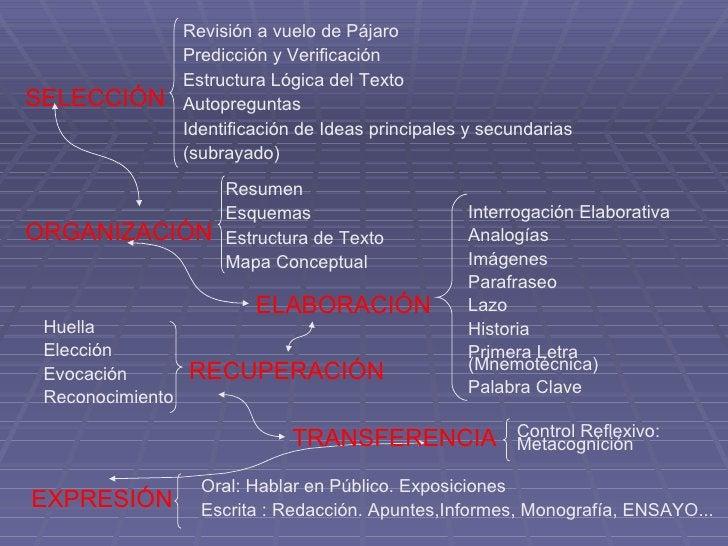 SELECCIÓN ORGANIZACIÓN RECUPERACIÓN EXPRESIÓN Revisión a vuelo de Pájaro Predicción y Verificación Estructura Lógica del T...