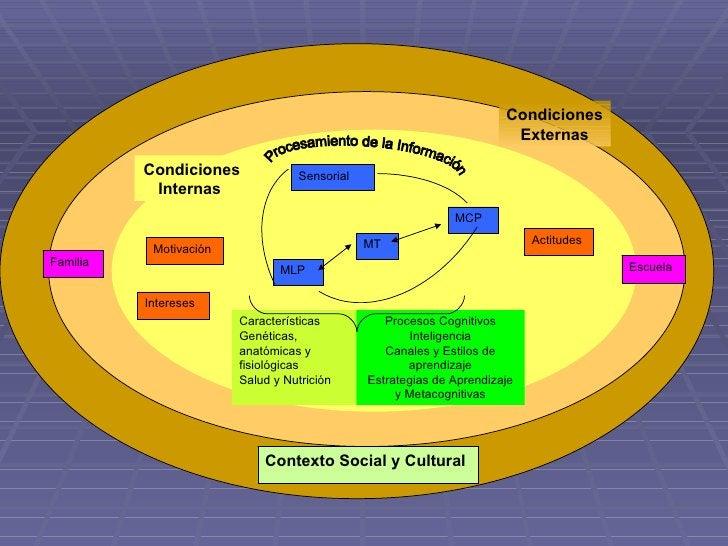 MLP Sensorial MCP MT Motivación Intereses Actitudes Familia Escuela Contexto Social y Cultural Condiciones Internas  Condi...