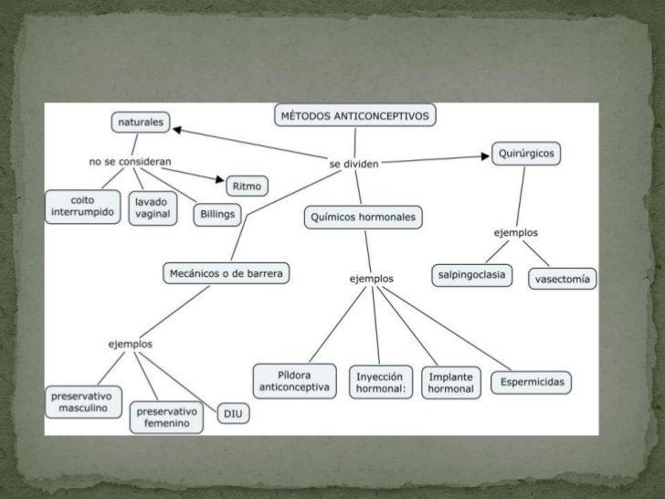 Estrategias de reproduccion de los organismos Slide 2