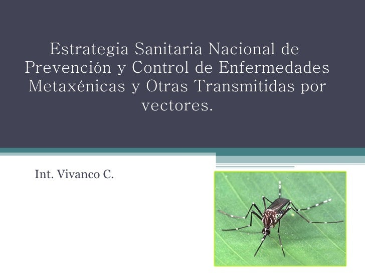 Estrategia Sanitaria Nacional de  Prevención y Control de Enfermedades Metaxénicas y Otras Transmitidas por vectores. Int....
