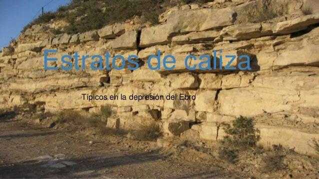 Estratos de caliza Típicos en la depresión del Ebro Estratos de caliza Típicos en la depresión del Ebro