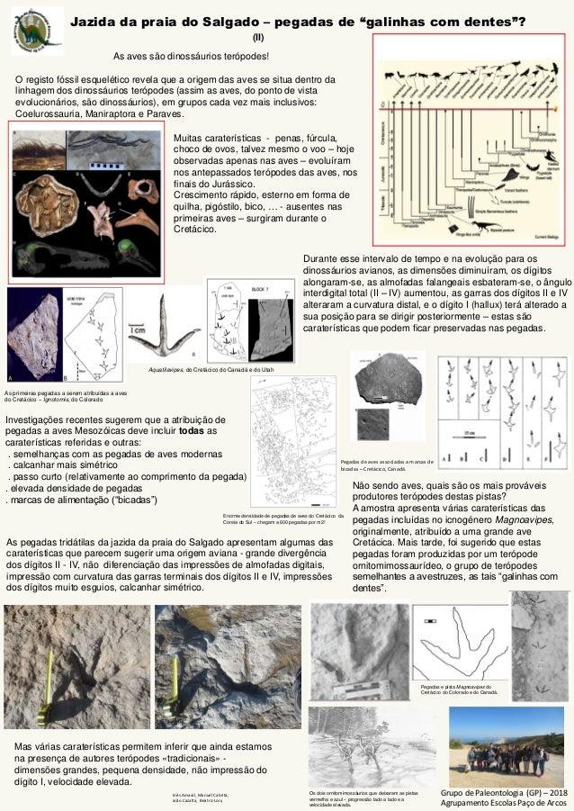 """Jazida da praia do Salgado – pegadas de """"galinhas com dentes""""? Grupo de Paleontologia (GP) – 2018 Agrupamento Escolas Paço..."""