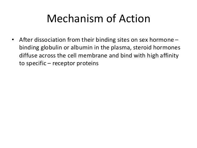 High sex hormone binding globulin photos 31