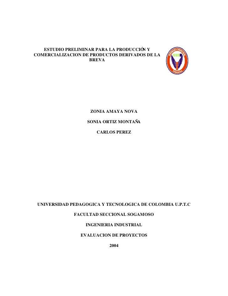 ESTUDIO PRELIMINAR PARA LA PRODUCCIÓ Y                                        N COMERCIALIZACION DE PRODUCTOS DERIVADOS DE...