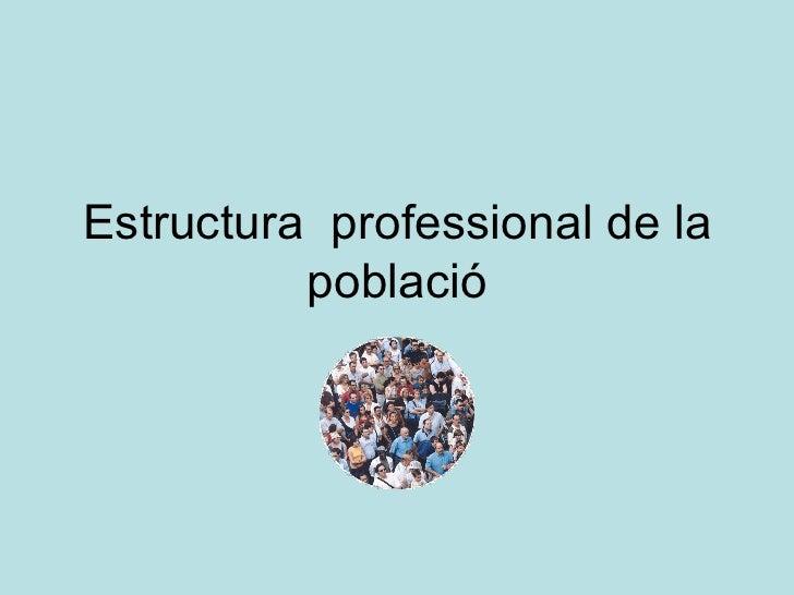 Estructura  professional de la població