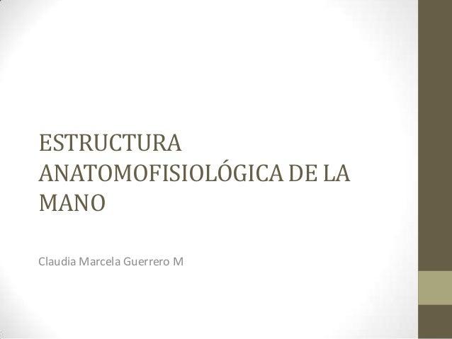 ESTRUCTURAANATOMOFISIOLÓGICA DE LAMANOClaudia Marcela Guerrero M