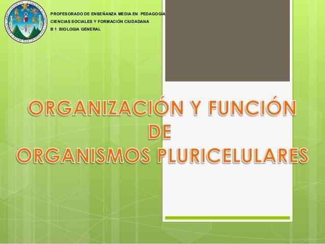PROFESORADO DE ENSEÑANZA MEDIA EN PEDAGOGÍA CIENCIAS SOCIALES Y FORMACIÓN CIUDADANA B 1 BIOLOGIA GENERAL