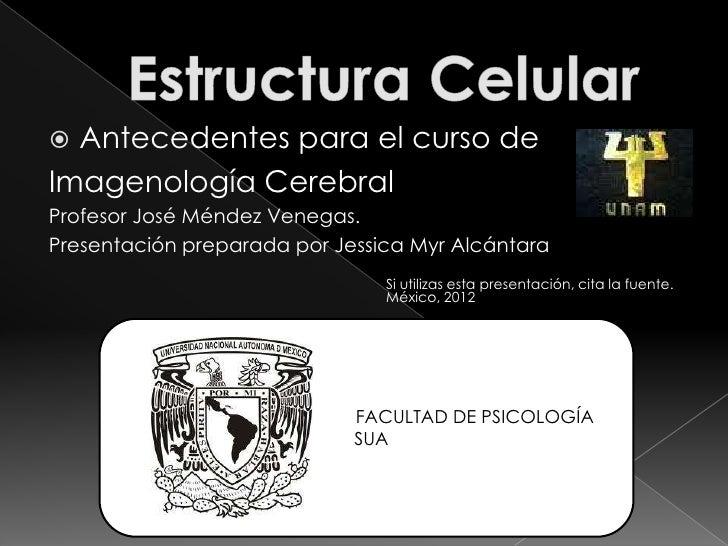  Antecedentes para el curso deImagenología CerebralProfesor José Méndez Venegas.Presentación preparada por Jessica Myr Al...