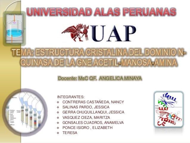Docente: MsC QF. ANGELICA MINAYAINTEGRANTES: CONTRERAS CASTAÑEDA, NANCY SALINAS PARDO, JESSICA GERRA CHUQUILLANQUI, JES...