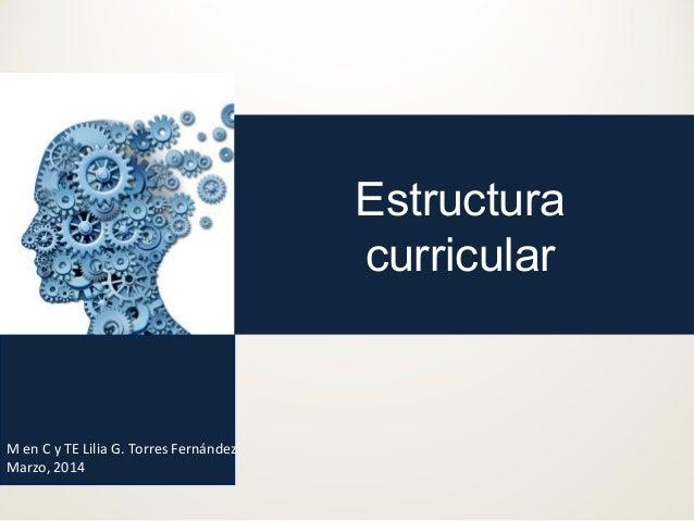 Estructura curricular M en C y TE Lilia G. Torres Fernández Marzo, 2014