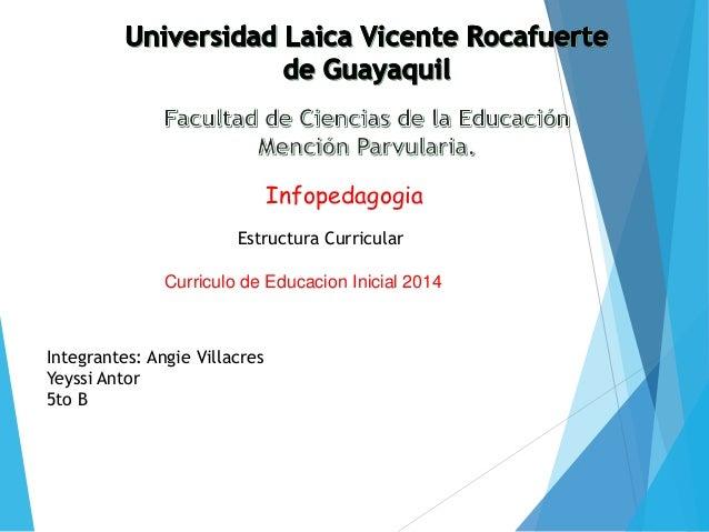 Estructura curricular para la educacion inicial for Nuevo curriculo de educacion inicial