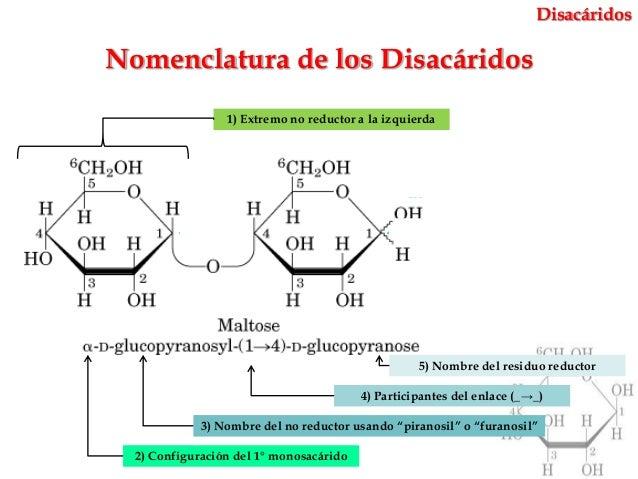 Carbohidratos mind42 for Como se escribe beta