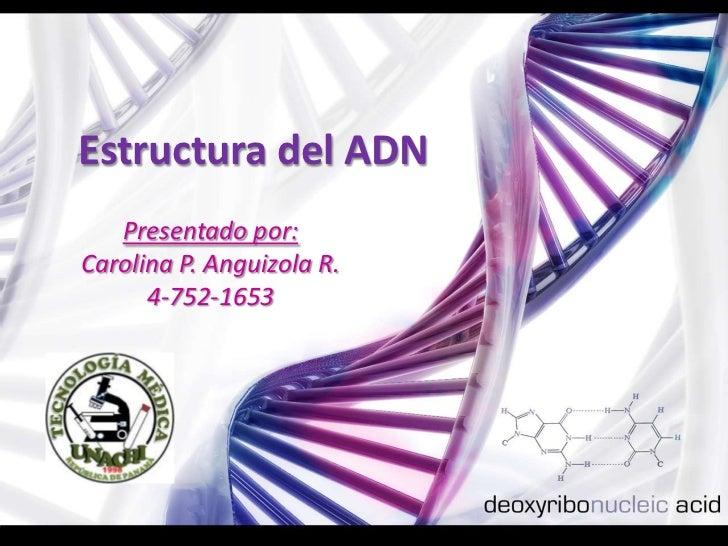 Estructura del ADN    Presentado por: Carolina P. Anguizola R.       4-752-1653