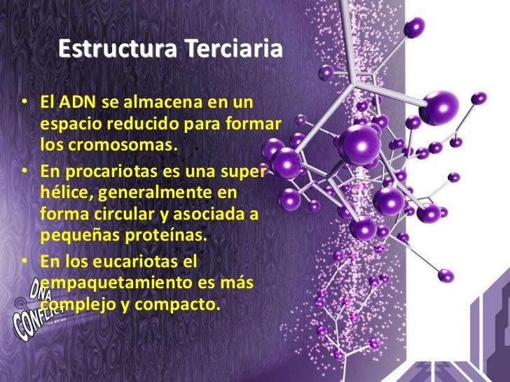 Estructura Terciaria • El ADN se almacena en un   espacio reducido para formar   los cromosomas. • En procariotas es una s...