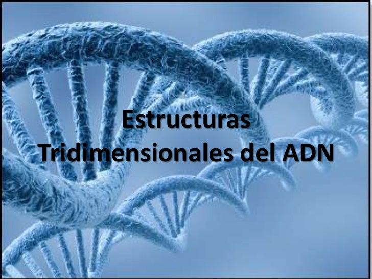 Estructuras Tridimensionales del ADN