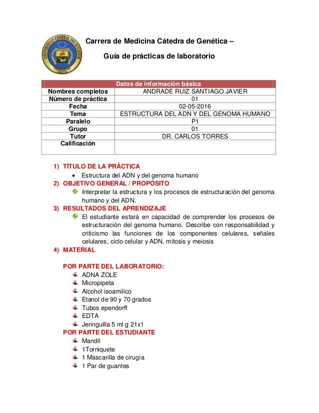 Estructura Del Adn Y Del Genoma Humano Santiago Andrade