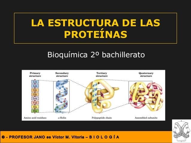 © - PROFESOR JANO es Víctor M. Vitoria – B I O L O G Í A LA ESTRUCTURA DE LAS PROTEÍNAS Bioquímica 2º bachillerato