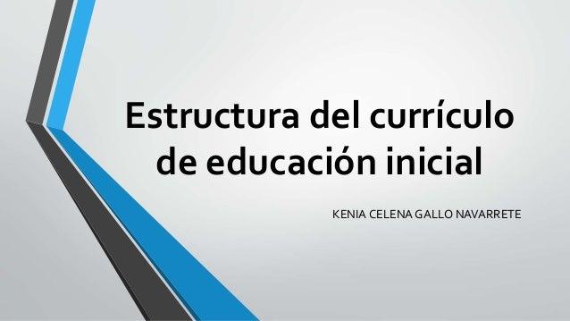 Estructura del curr culo de educaci n inicial for Nuevo curriculo de educacion inicial