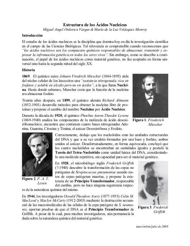maov/mlvm/julio de 2009Estructura de los Ácidos NucleicosMiguel Angel Ordorica Vargas & María de la Luz Velázquez MonroyIn...