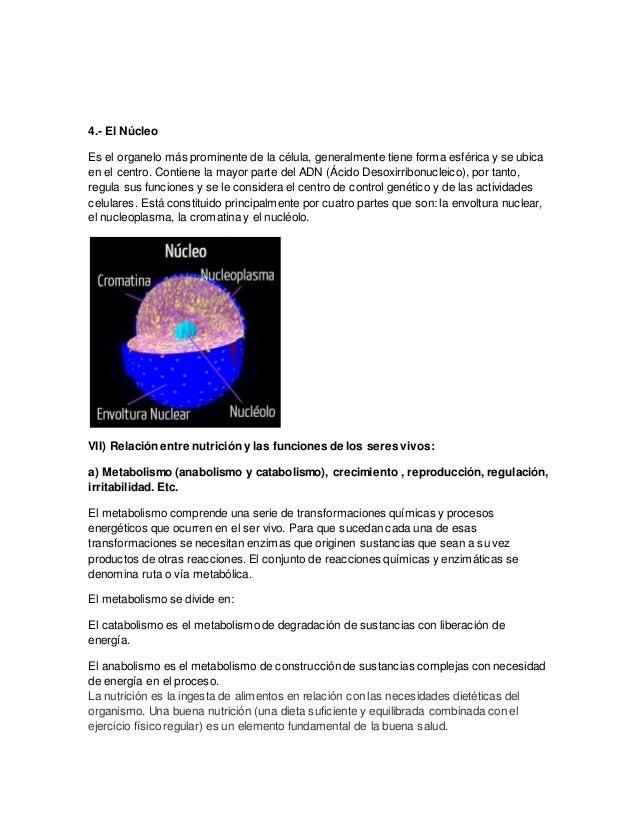 Estructura de los seres vivos (Estructura Celular..