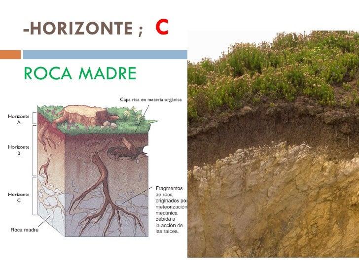 Estructura del suelo for Roca definicion