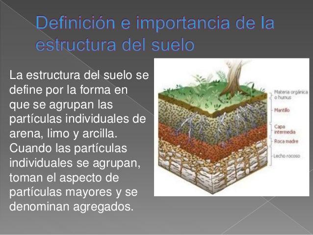 definici n e importancia de la estructura del suelo