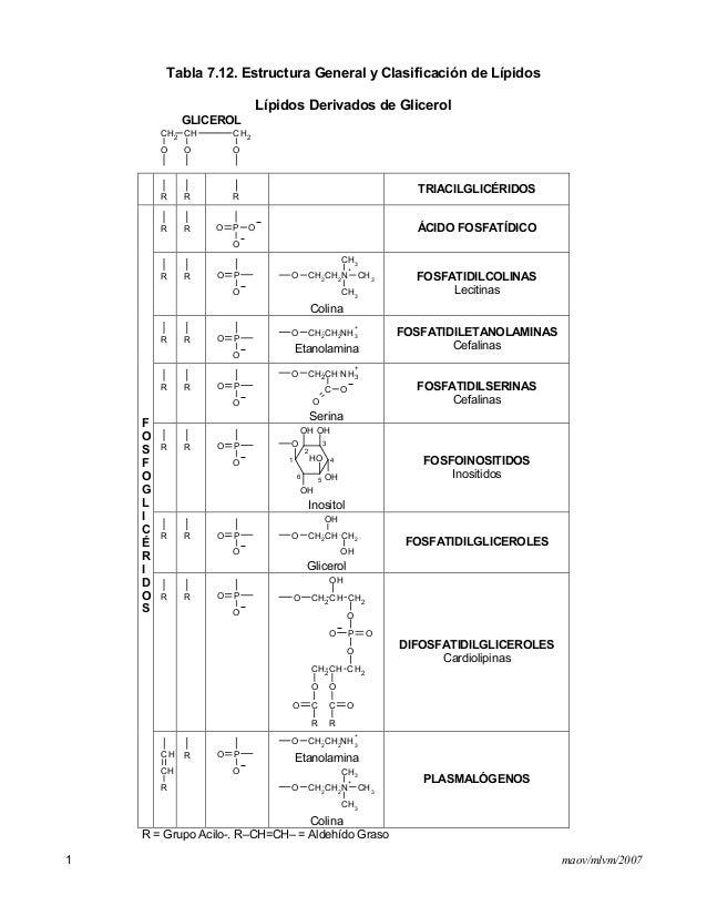maov/mlvm/20071Tabla 7.12. Estructura General y Clasificación de LípidosLípidos Derivados de GlicerolGLICEROLCH2 CH CH2OOO...