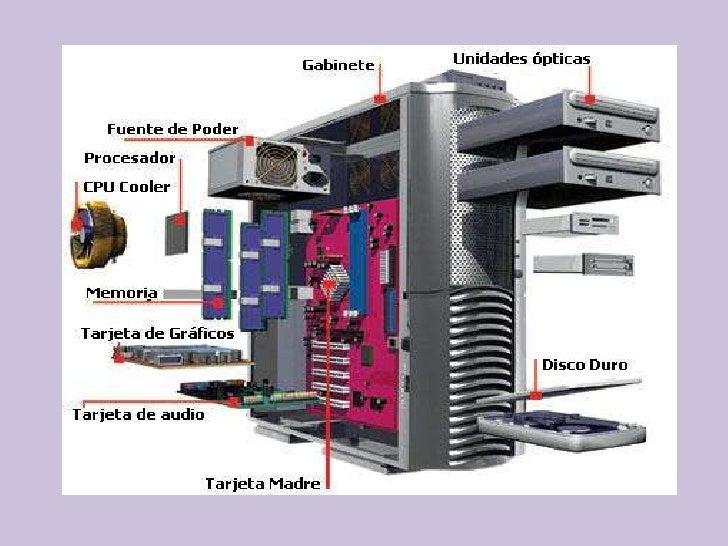 Estructura Externa Y Componentes Internos De Equipo