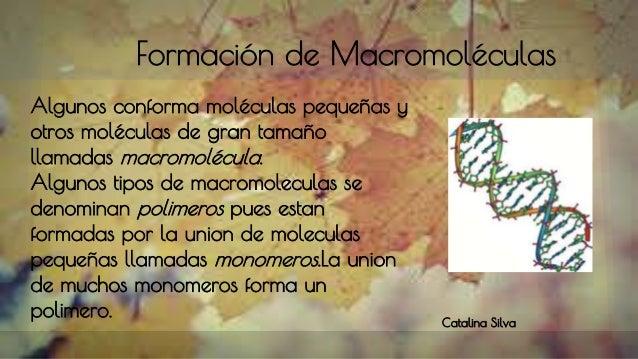Formación de Macromoléculas Algunos conforma moléculas pequeñas y otros moléculas de gran tamaño llamadas macromolécula. A...