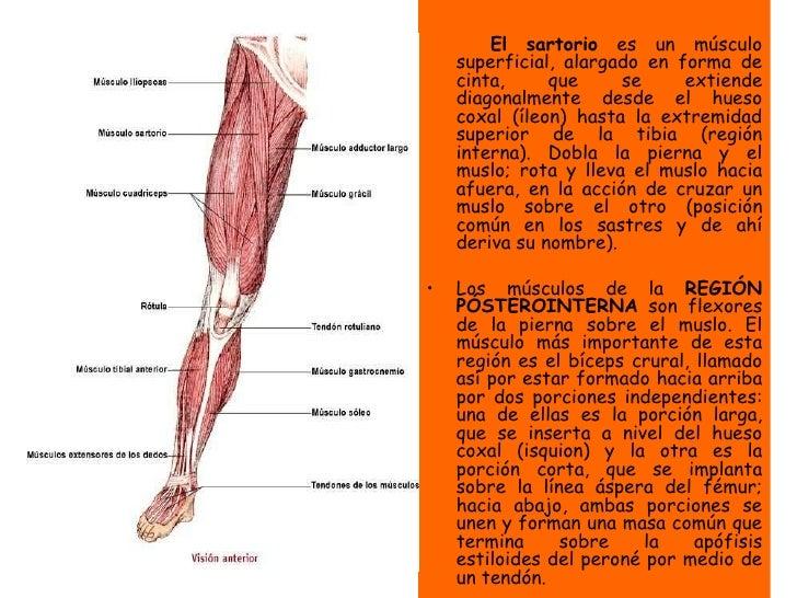 3 hábitos de dolor en la parte baja de la espalda extremadamente eficiente