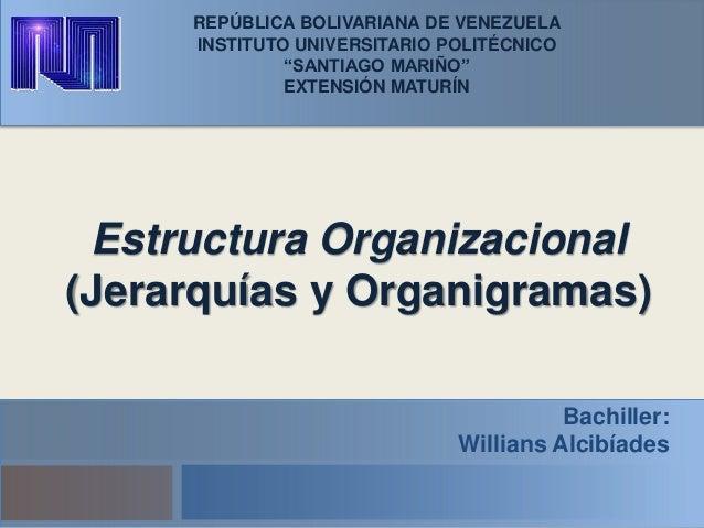 Estructura Organizacional Jerarquia Y Organigramas