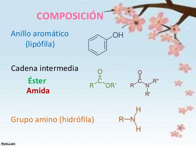 Estructura Química De Los Anestésicos Locales