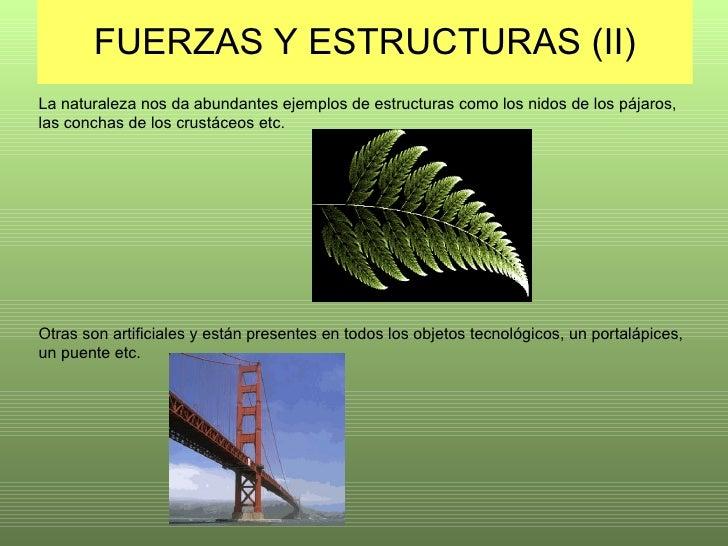 FUERZAS Y ESTRUCTURAS (II) La naturaleza nos da abundantes ejemplos de estructuras como los nidos de los pájaros, las conc...