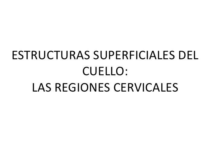 ESTRUCTURAS SUPERFICIALES DEL CUELLO:LAS REGIONES CERVICALES<br />